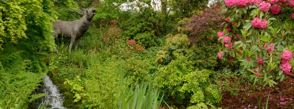 Dorothy Clive Garden 2
