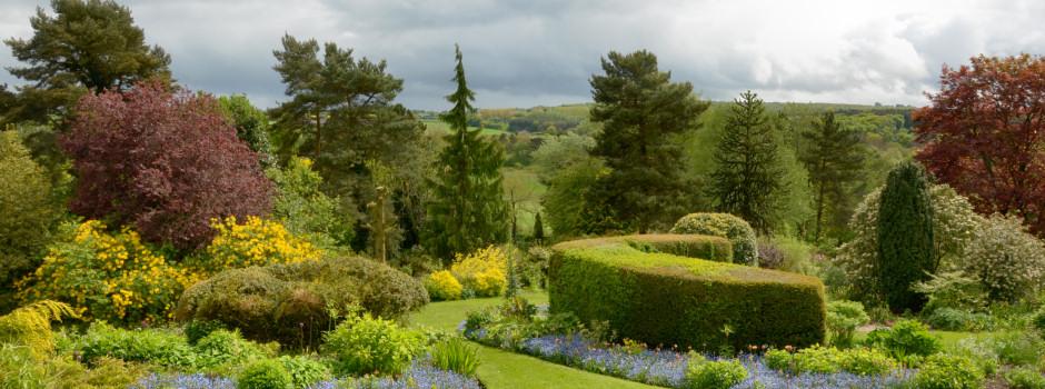 Dorothy Clive Garden 3